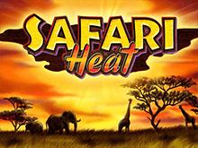 Safari Heat играть в Вулкане удачи