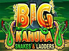 Автомат Большой Кахуна Змеи И Лестницы онлайн